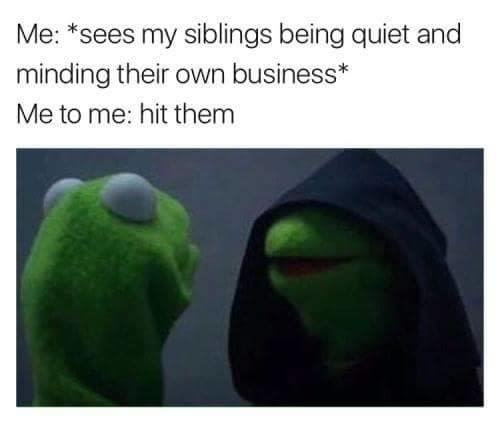 siblings meme